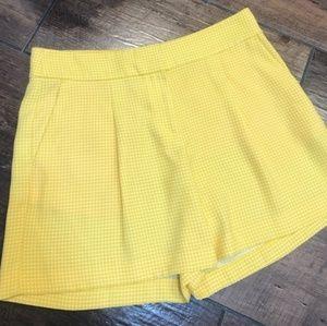 Cute Dressy Ann Taylor Shorts 💛